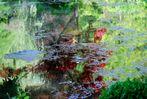 Quelques notes de couleurs au fil de l'eau