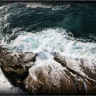 qui pot dir que no l'hi agrada el mar ?