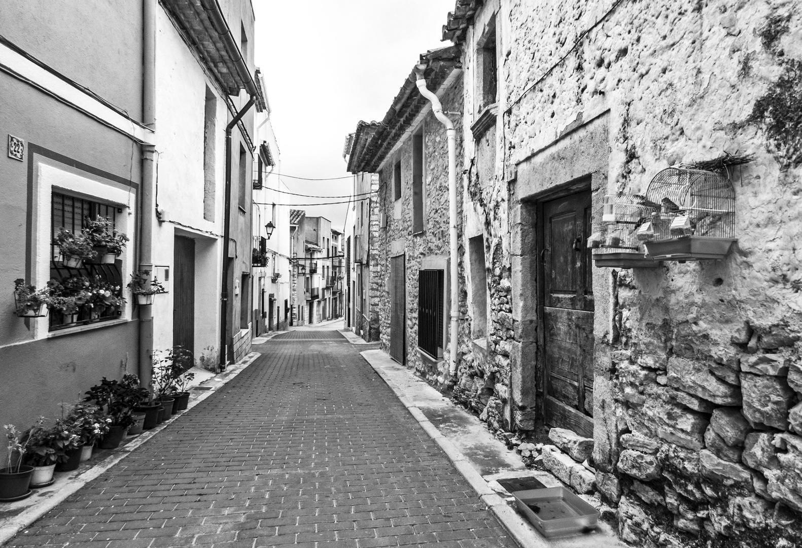Quién vive ahi II (El  vecindario) - Who lives there II (The neighborhood)