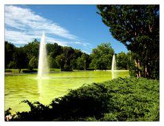 Quiet Waters Park - Summer Idyllic No.1