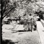 Quiet Waters Summer No.8 - A View from the Gazebo