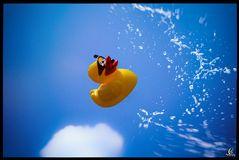 Quietscheentchen Splash
