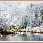 Quiétude hivernale