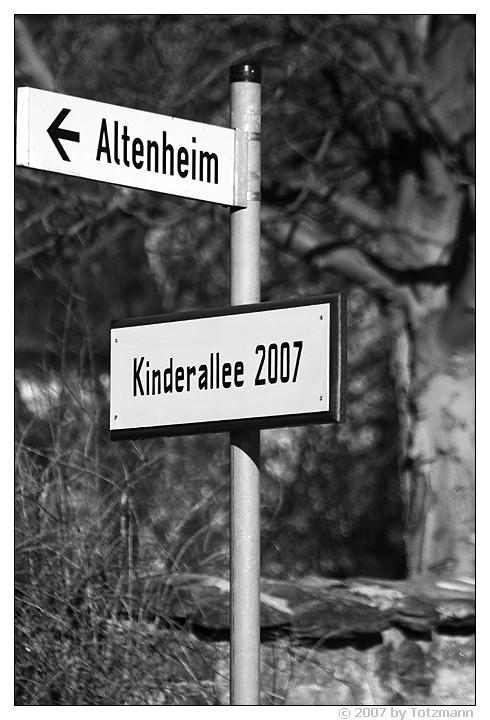 Quo vadis 2008?
