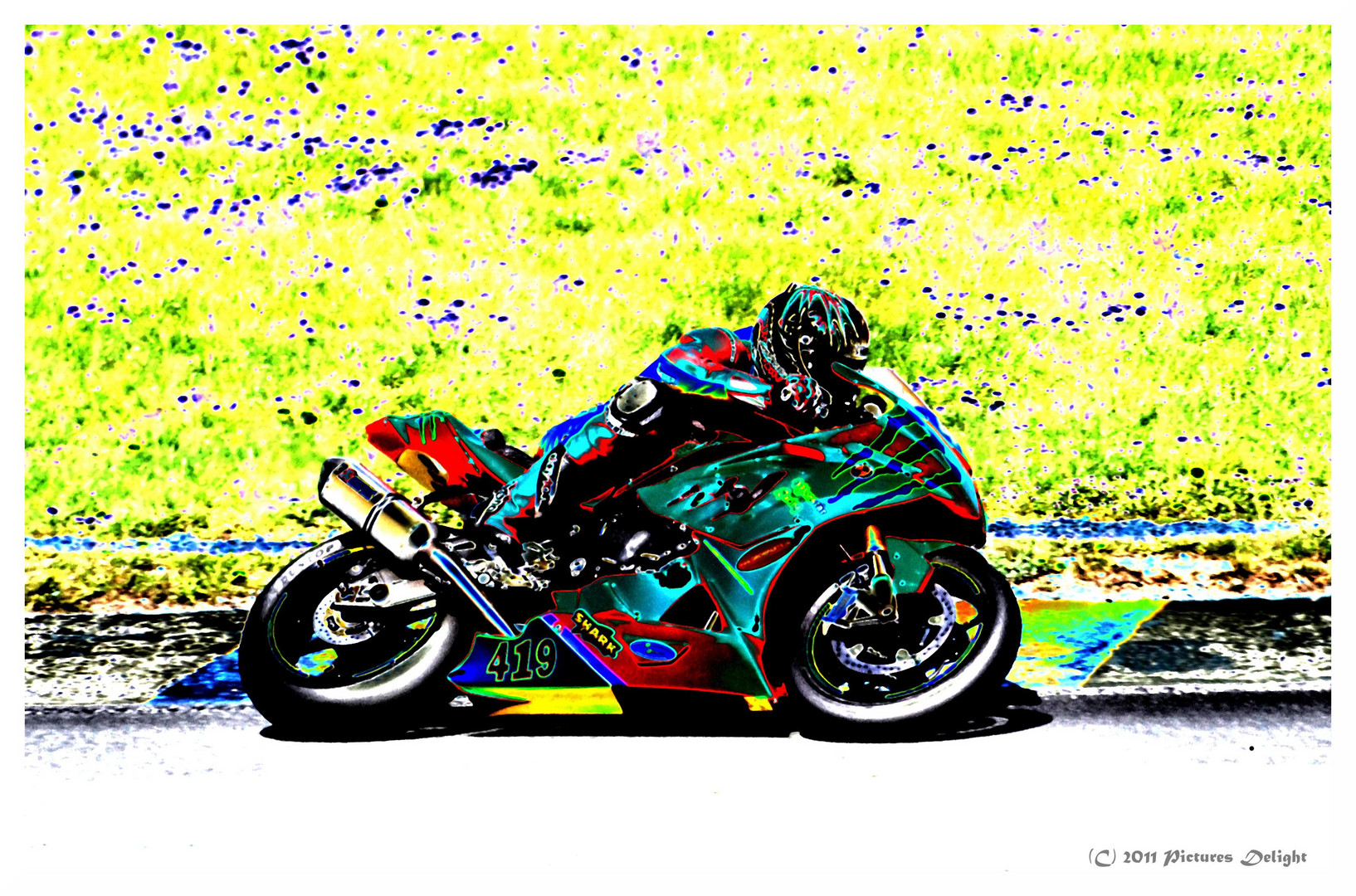 - Racers Paradise -