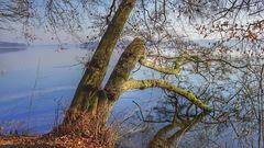 Rad- und Wanderweg am Schweriner See