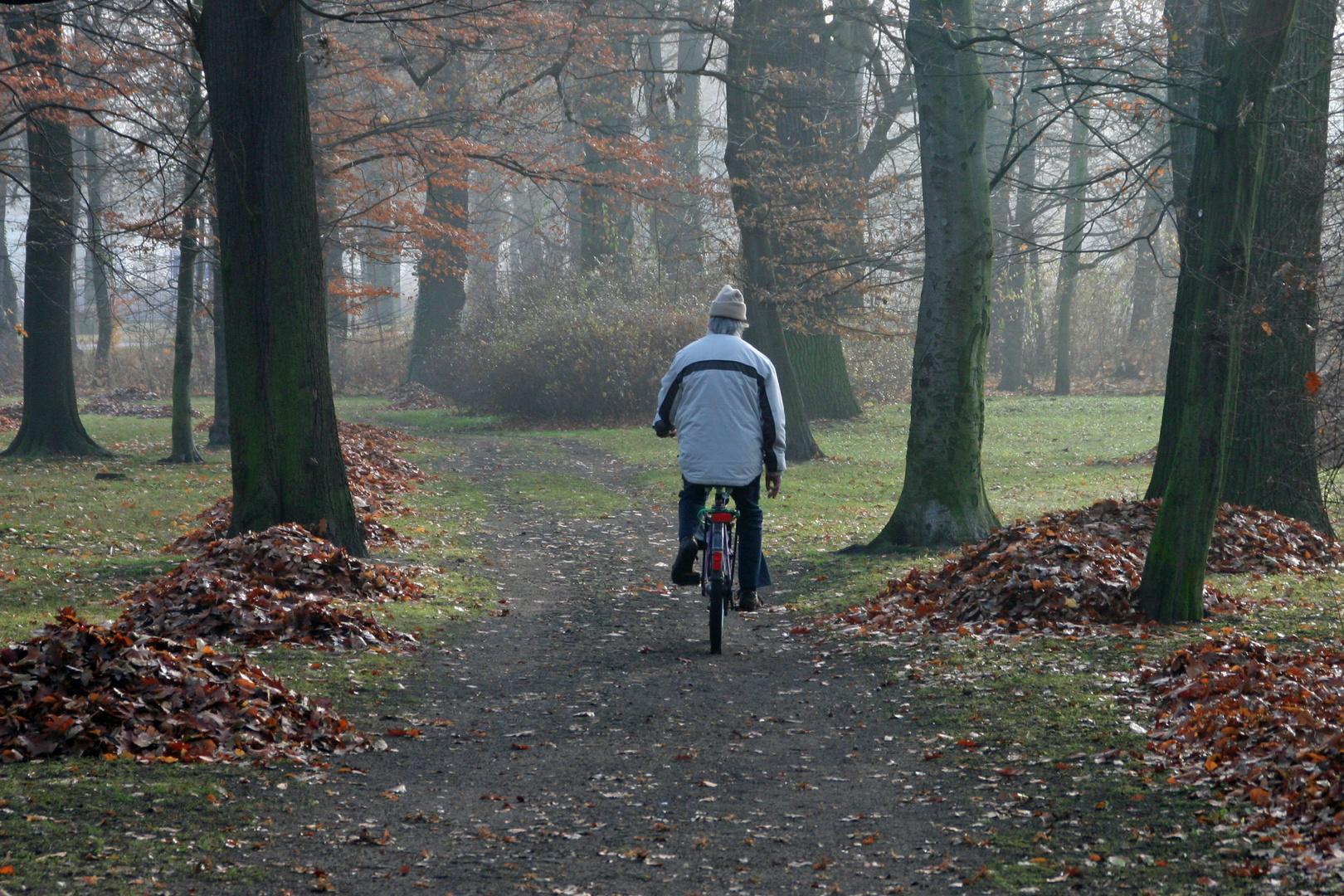 Radfahrer im Stadtpark Forst / Niederlausitz