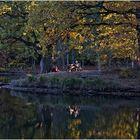 Radlerpause im Herbstlicht