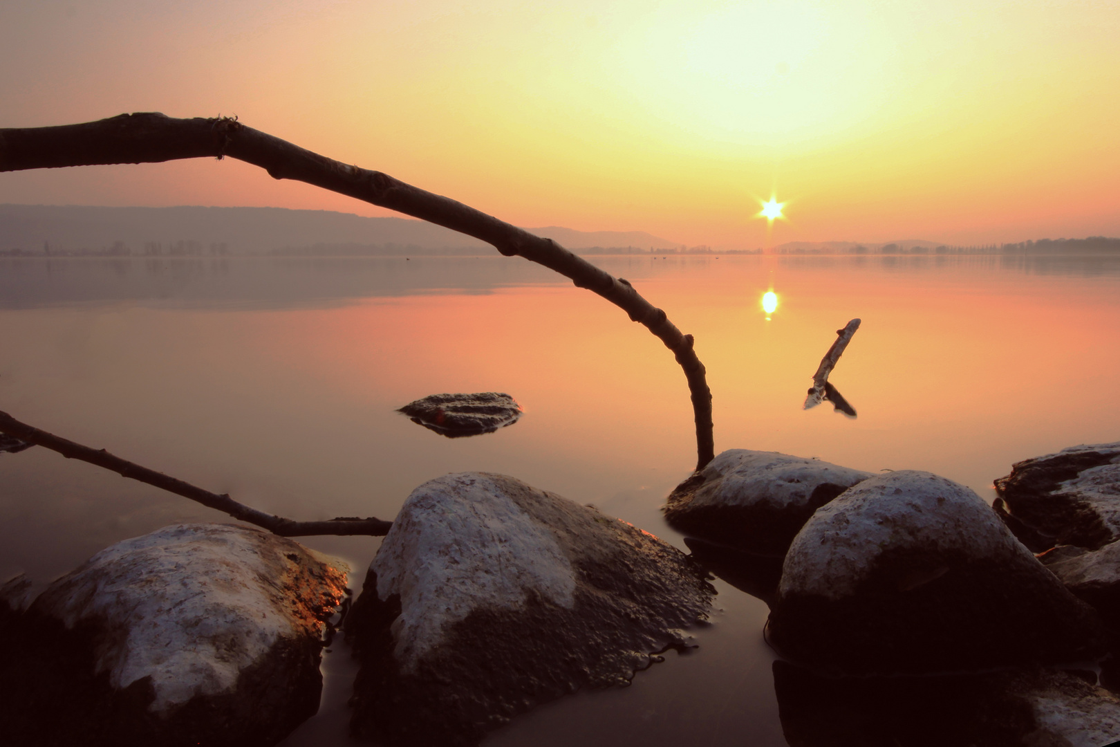 Radolfzeller Ufer Sonnenuntergang