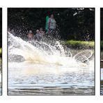 Radrennen über Wasser 2009/5