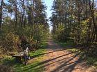 RadTour durch die Hohe Mark (Naturschutzgebiet)