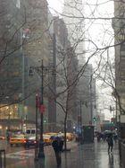 rain 5th avenue