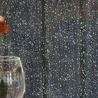 ....... rain, rain and more rain ..........