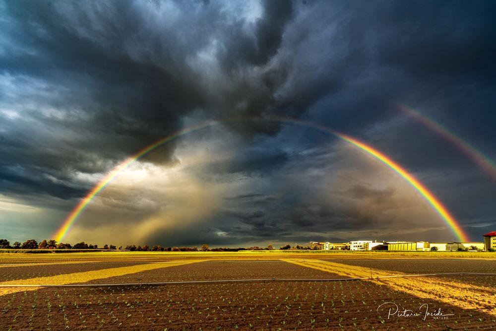 Rainbow hoch 2