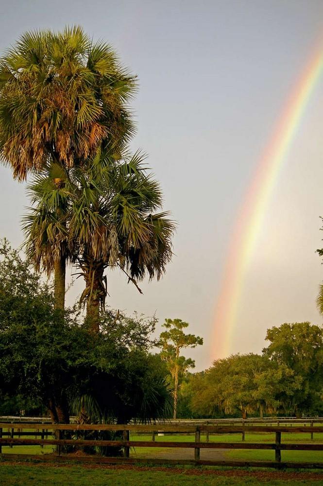 Rainbow in Florida