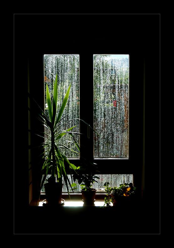 Raindrops falling on my ...