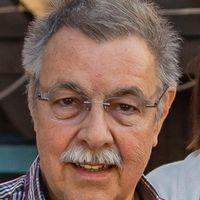 Rainer Steen