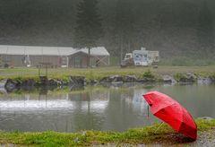 ... rainy ...