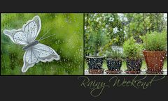 Rainy Weekend