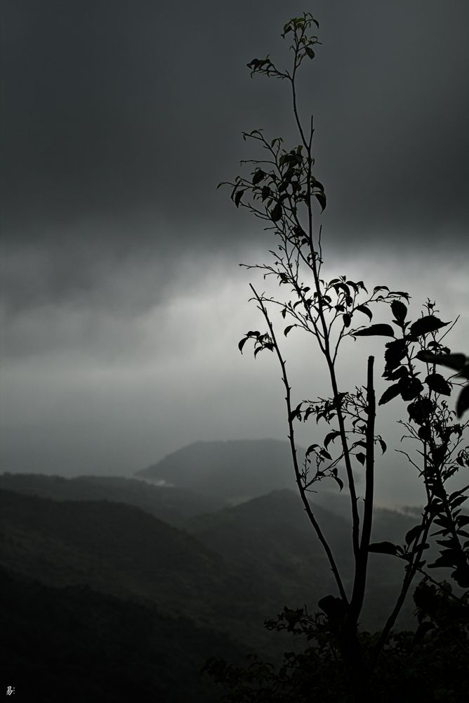 rainy.day - 'hai van pass'