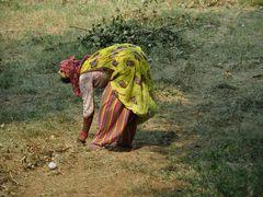 Rajasthan, Frau bei der Arbeit