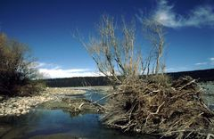 Rakaia River Flußbett in der Nähe von Mount Hutt