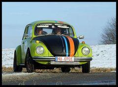 Rally-Käfer