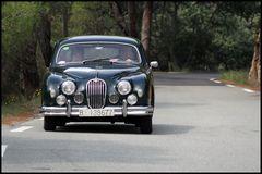 Rally St. Tropez -Jaguar-