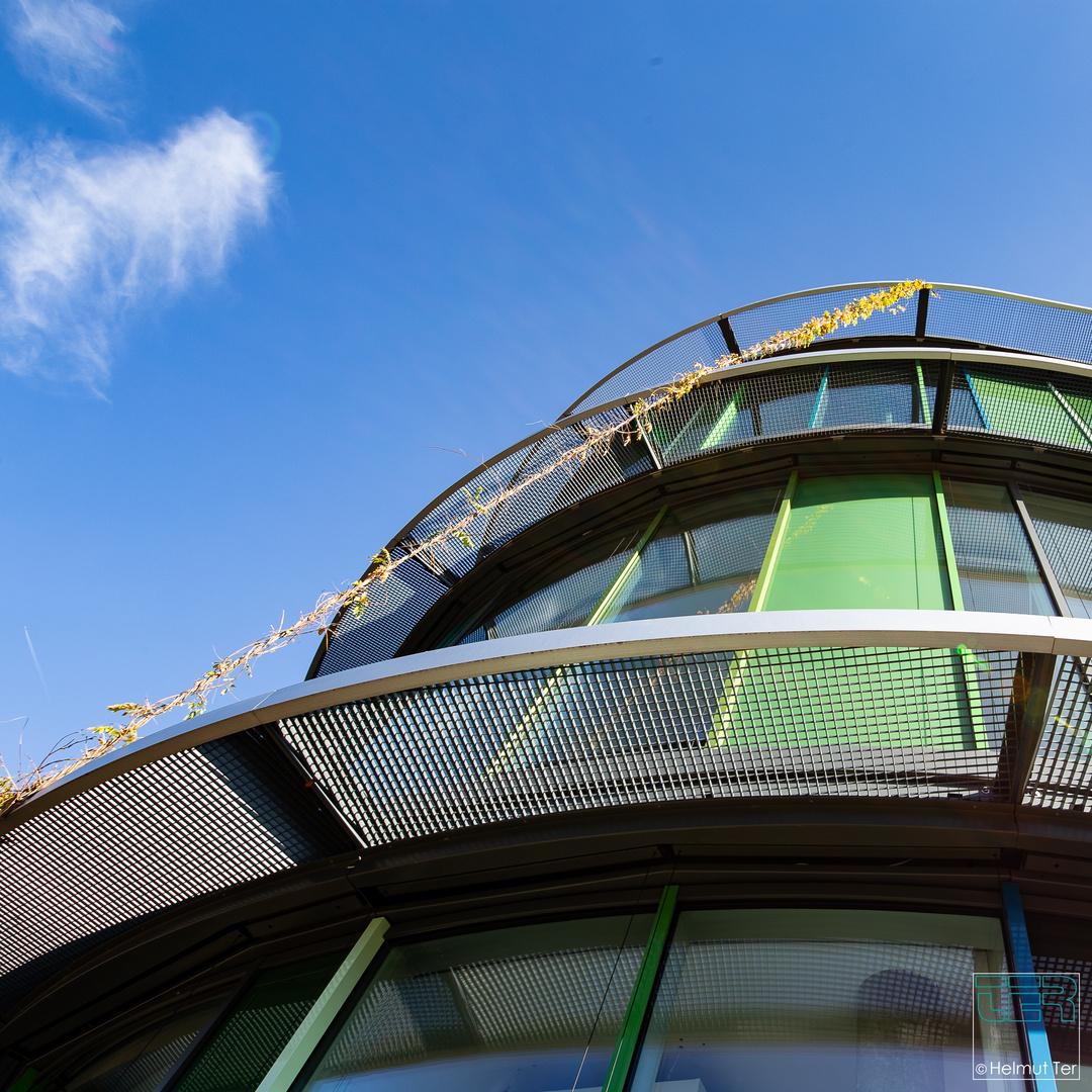 Rankgewächs an moderner Architektur.