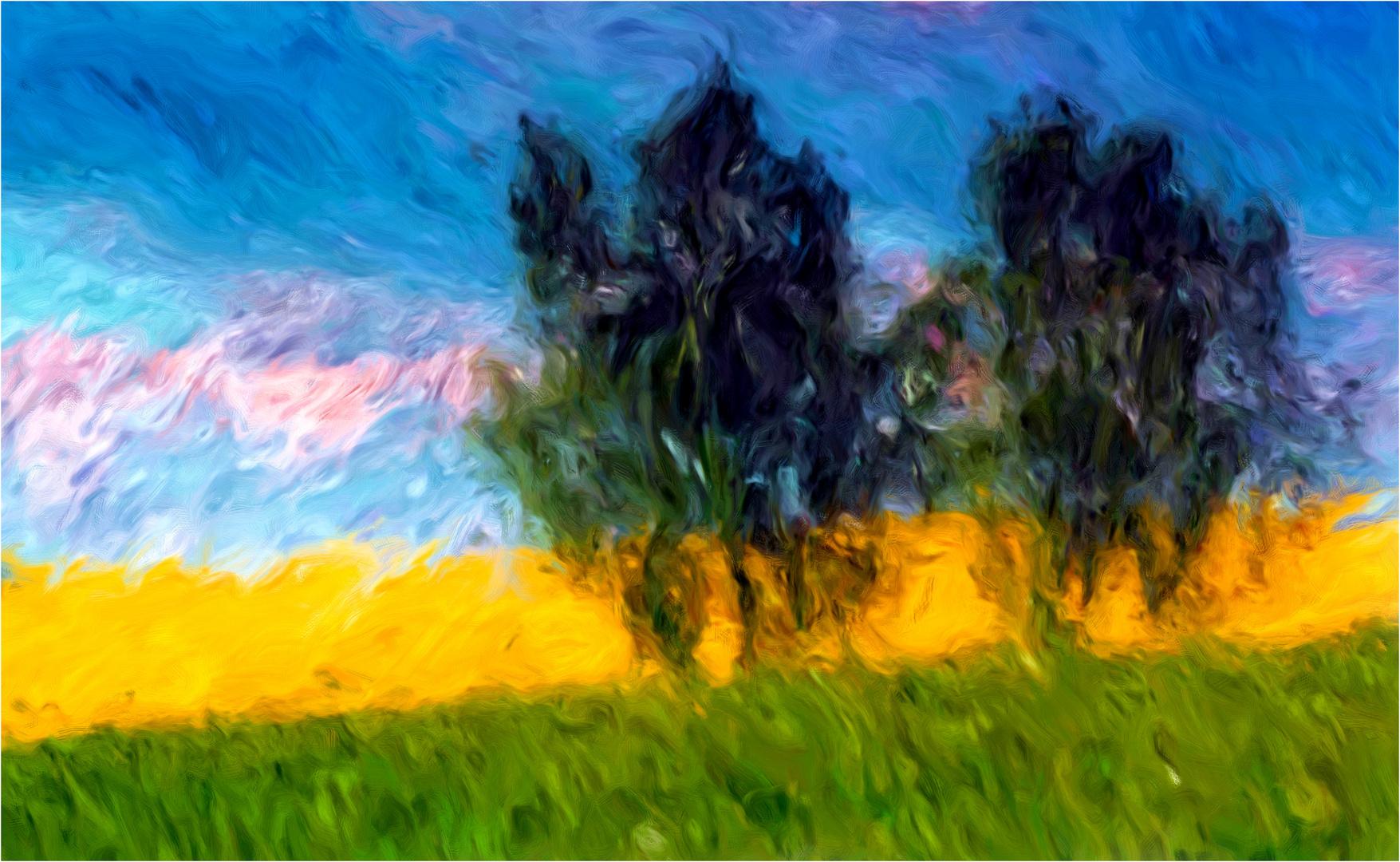 Rapsfeld im Wind