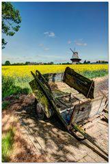 Rapsfeld mit Mühle und verfallener Pferdeanhänger