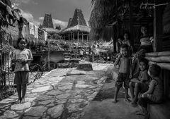 Rasselbande ~ Sumba Barat, Indonesia