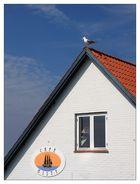 Rast in Vang/Bornholm