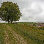 Rastplatz