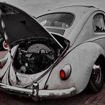 Rat Beetle