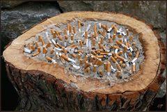 Rauchen ...