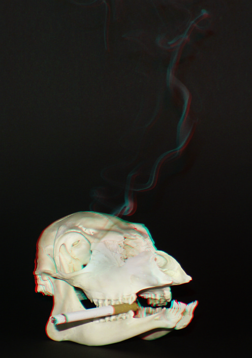 Rauchen schadet Ihrer Gesundheit [3D]