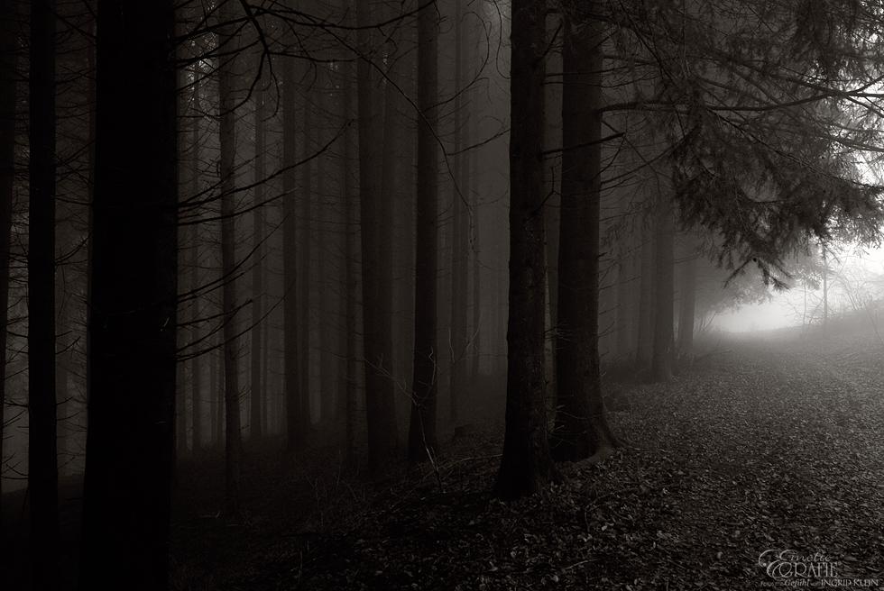 Rauhnacht 9