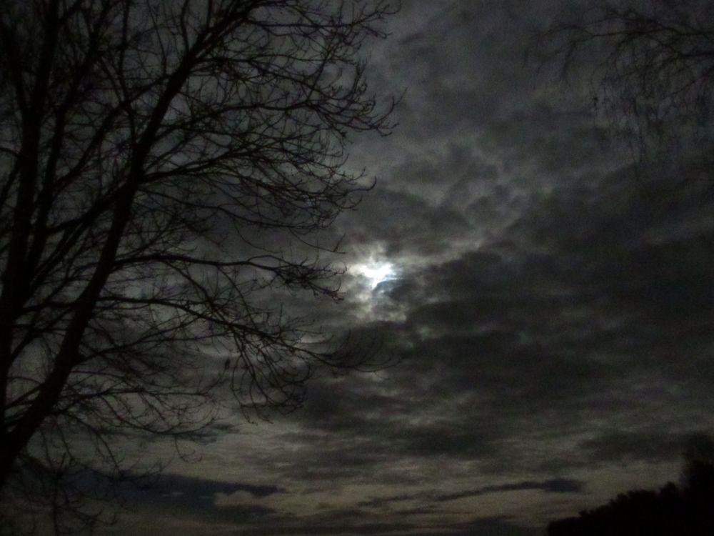 Rauhnachtsmond bei 10°C