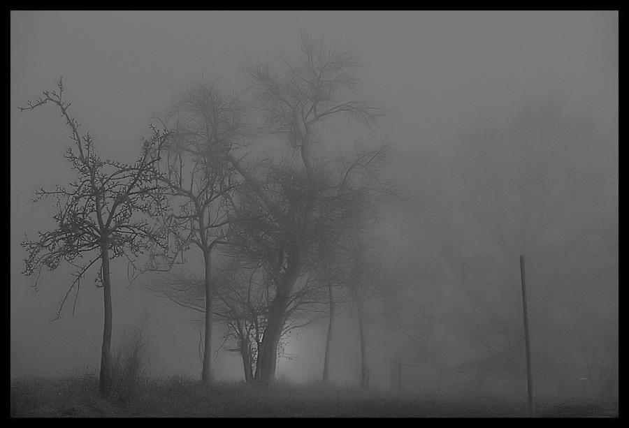 Rauschen im Nebel