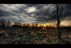 >> Ravens Land <<