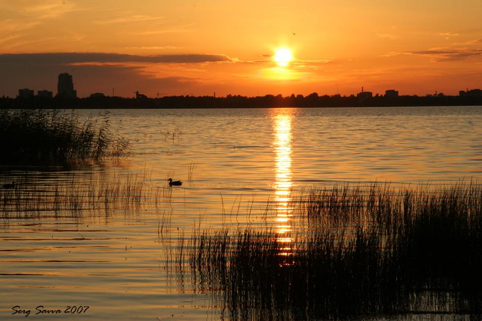 Razliv Lake