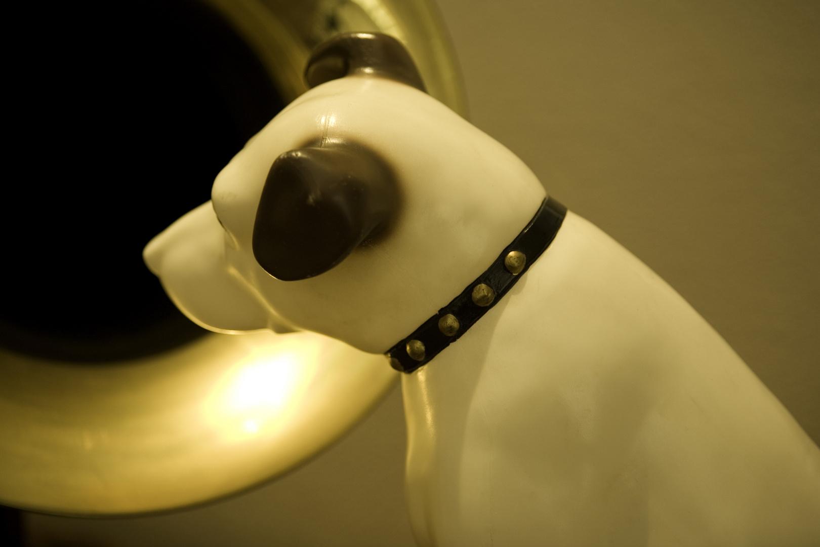 RCA Dog
