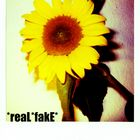 reaL*fake*