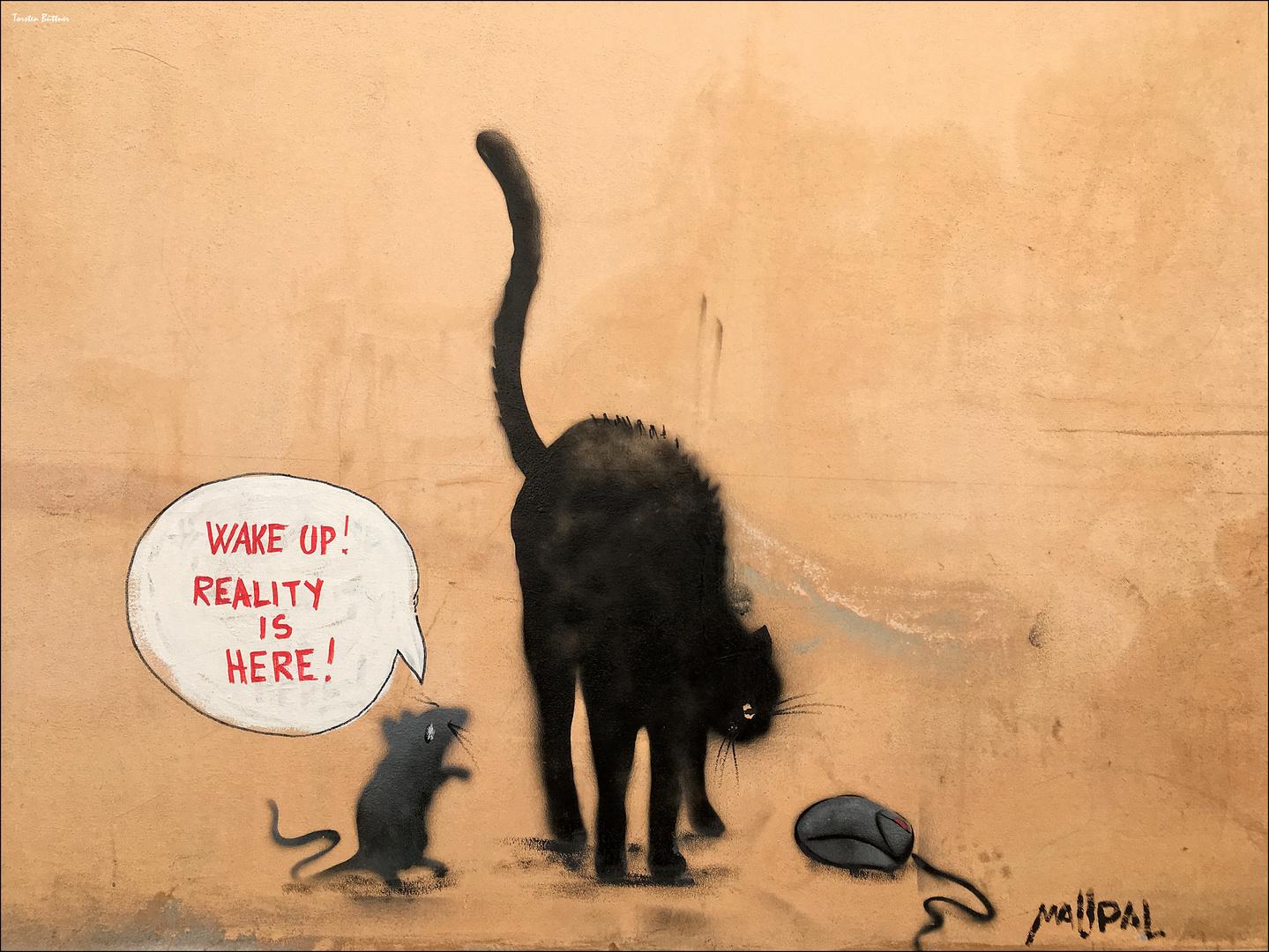 Realitätsverlust