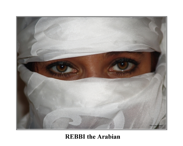 REBBI THE ARABIAN