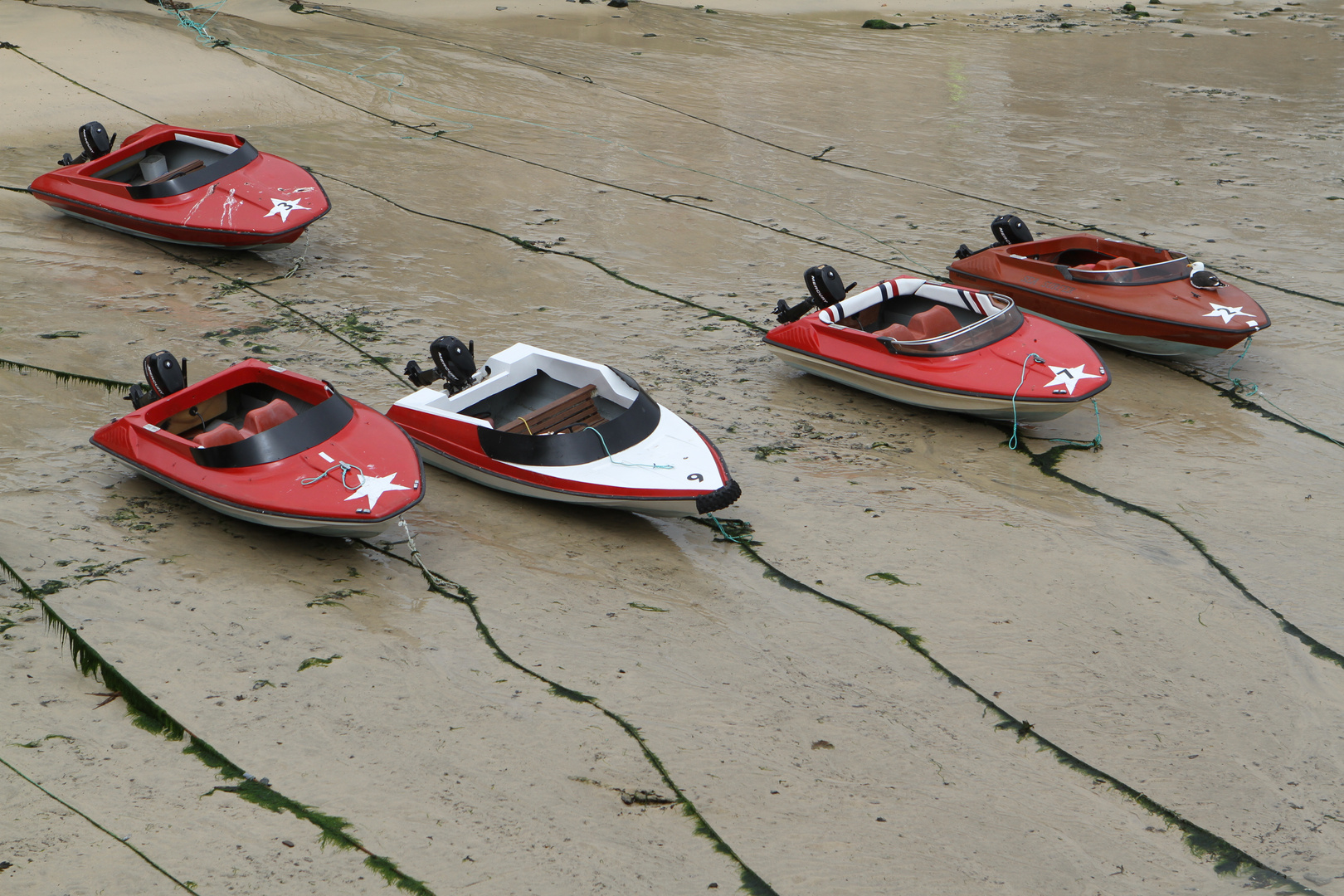 Red Boats