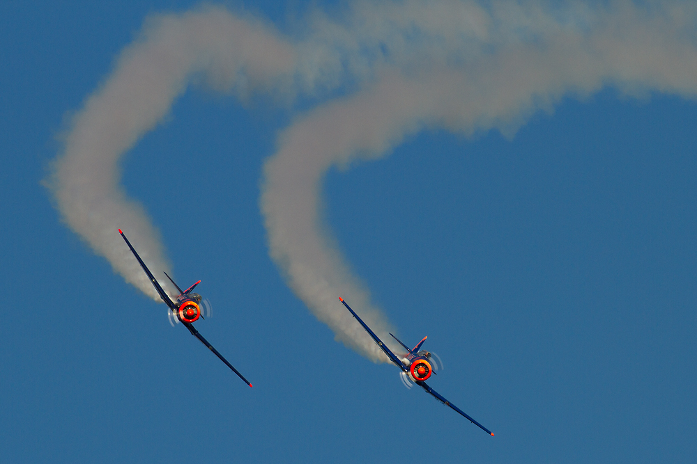Red Bull North American SNJ-5 Texan