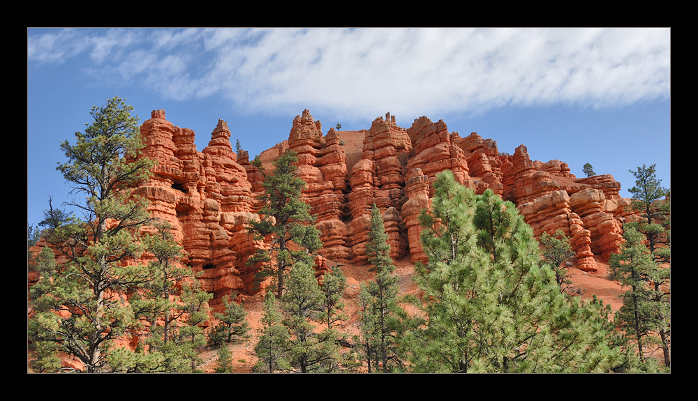 [ Red Canyon ]
