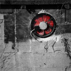 red fan